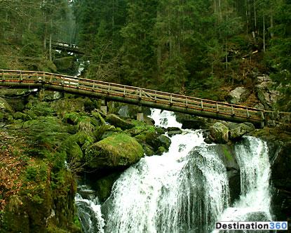 Германия черный лес